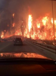 Driving through the firestorm  - twitter
